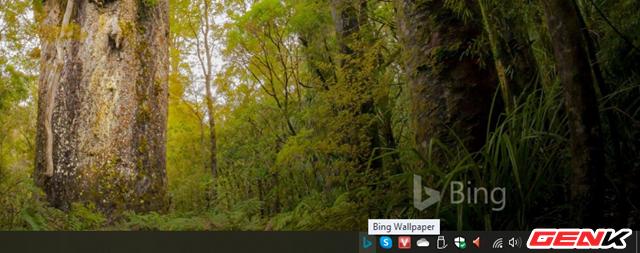 Microsoft đã phát hành ứng dụng Bing Wallpaper với hình ảnh stock khổng lồ cho Windows 10 - Ảnh 6.