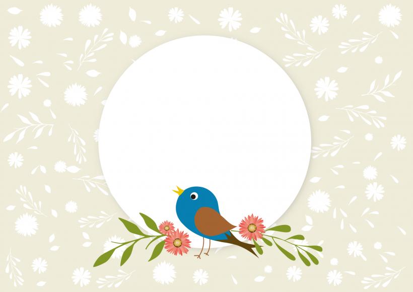 Vector mùa xuân khung ảnh nền png chim đẹp