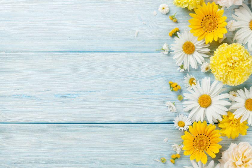 nền gỗ hoa cúc