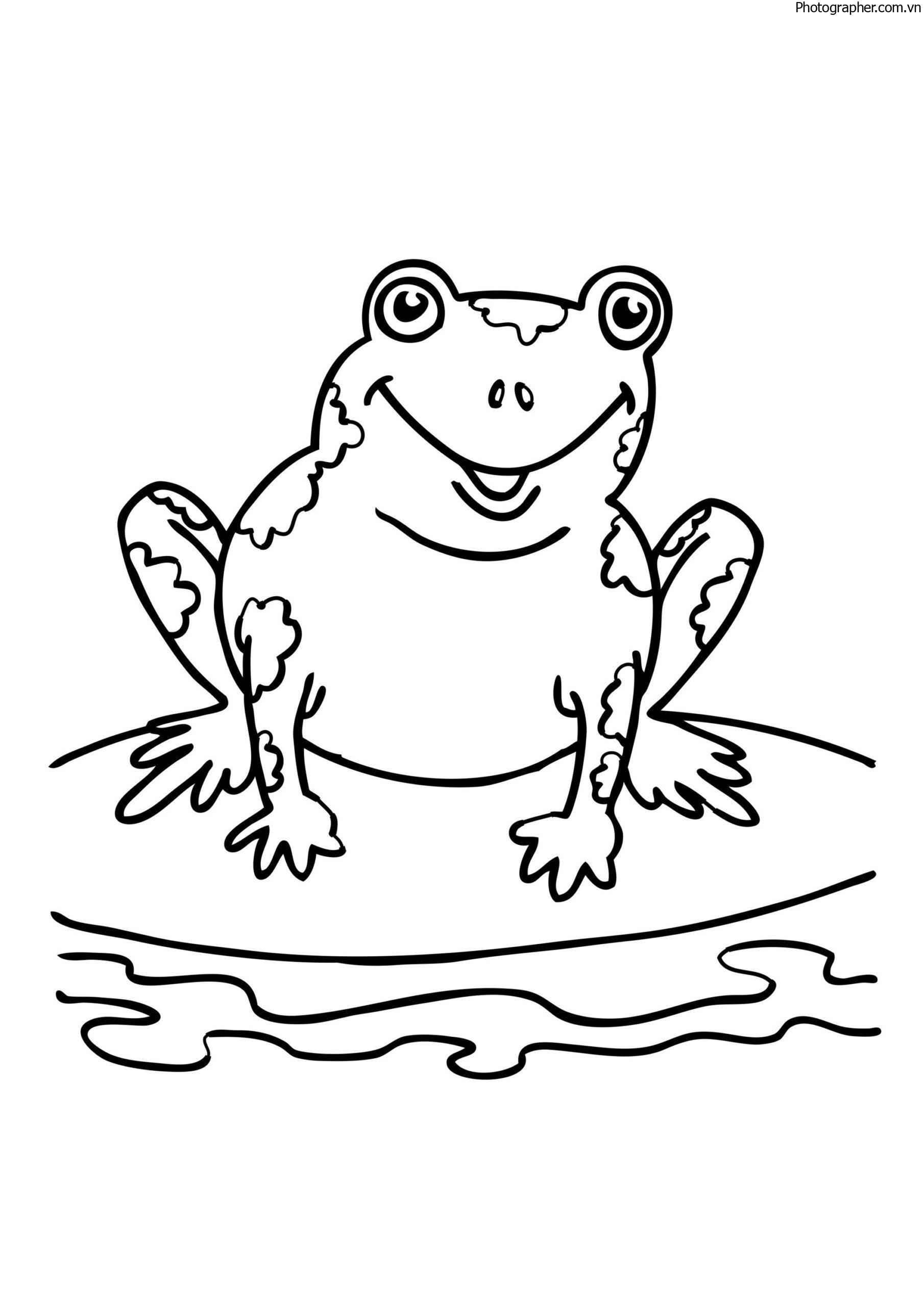 Tổng hợp các bức tranh tô màu con ếch đẹp nhất cho bé