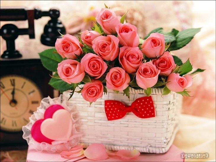 Valentine-màu hồng-hoa-valentine-16