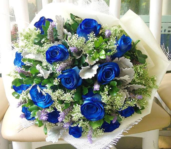 hoa-rose-blue-beautiful-tang-people-love-valentine-13