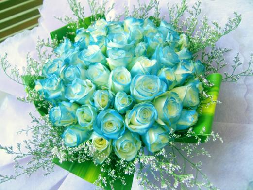 hoa-rose-blue-beautiful-tang-people-love-valentine-2