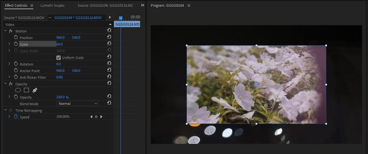 Sử dụng các hiệu ứng cố định trong Premiere Pro