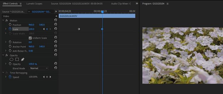 Điều chỉnh khung hình chính trong Premiere