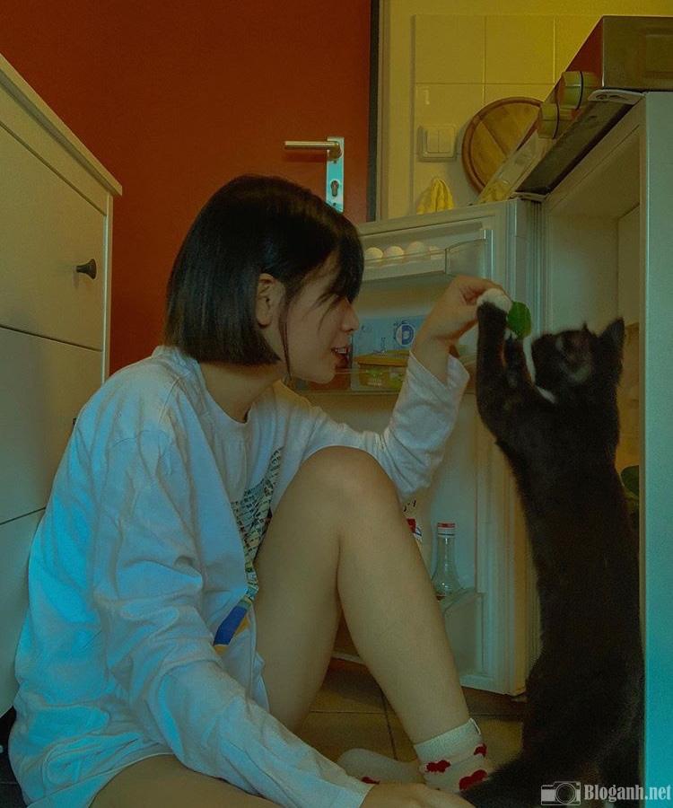nhiếp ảnh gia đình, cô gái, con mèo, tủ lạnh