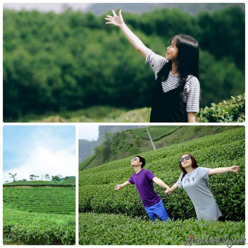 Đồi chè Đông Giang Đà Nẵng, miền đất mộng mơ cho đôi chân không mỏi