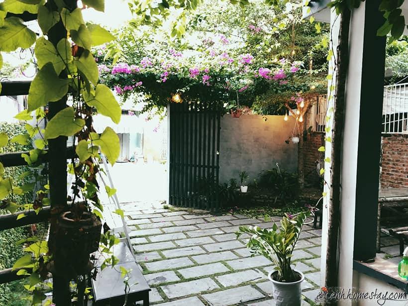 D - Green Hostel: View đẹp, yên bình tha hồ sống ảo mọi ngóc ngách