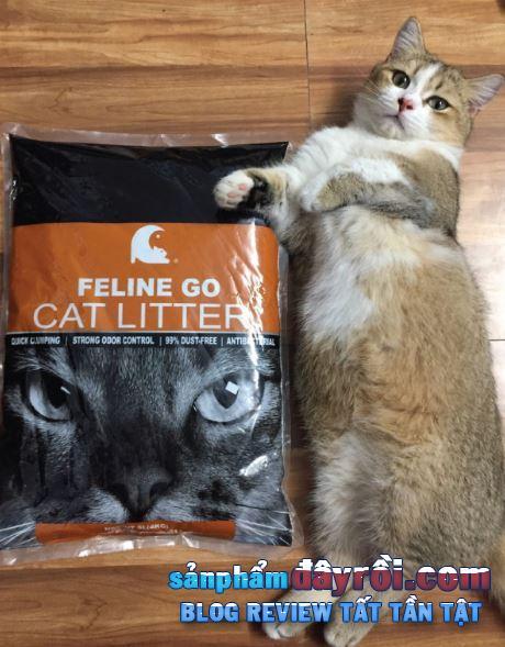 Cát Feline Go có độ sần cao