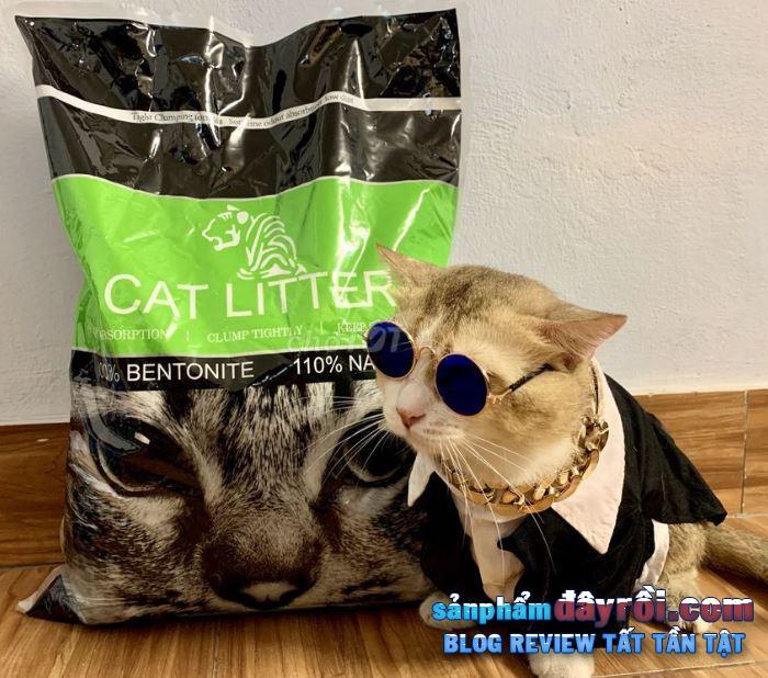 Cat Litter cũng rất phổ biến