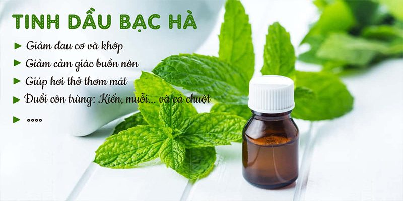 Medications from mint