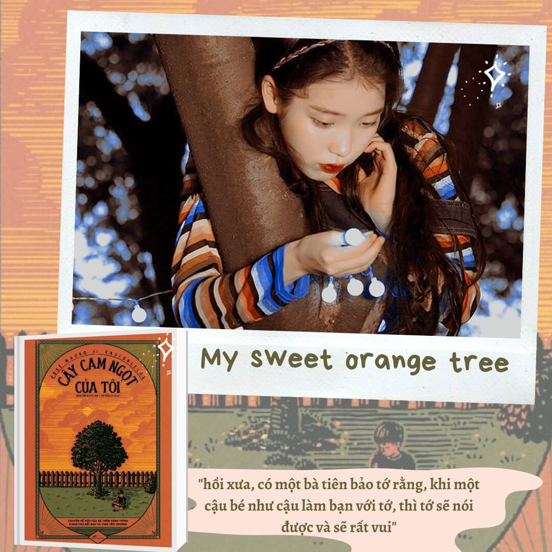 Ảnh Nha Nam My sweet cam tree reviewsachonly
