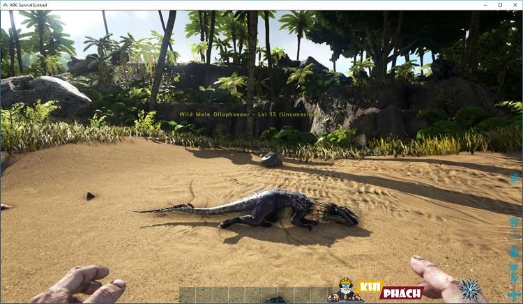 Ad vừa hạ một con khủng long đây kk
