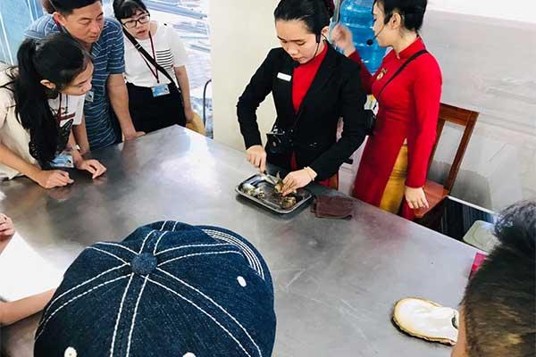 Cơ sở nuôi cấy ngọc trai: tìm hiểu quy trình kỹ thuật viên mổ ốc thủ công để lấy ngọc trai.  Nói đến Phú Quốc là nói đến đảo ngọc