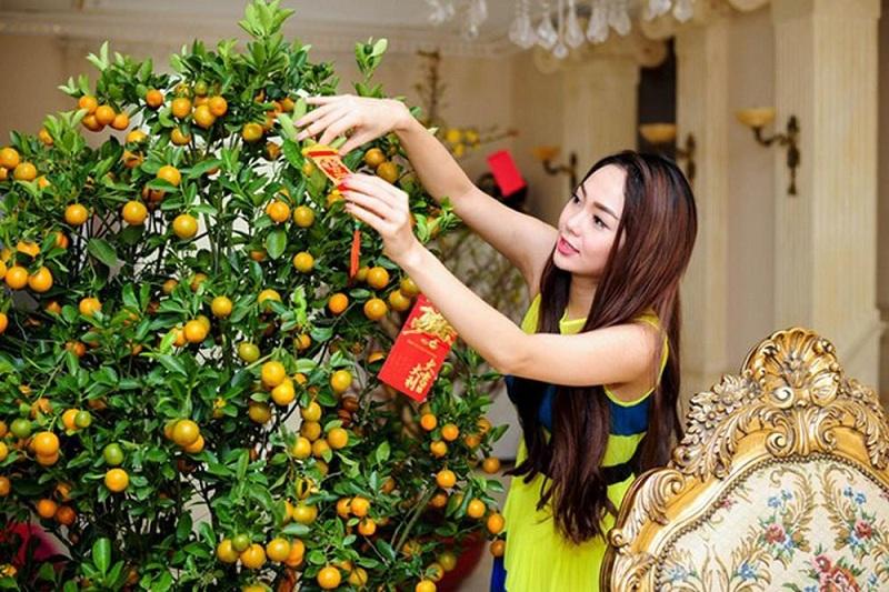Chăm sóc cây quất đúng cách để quất xanh tốt trong dịp Tết.