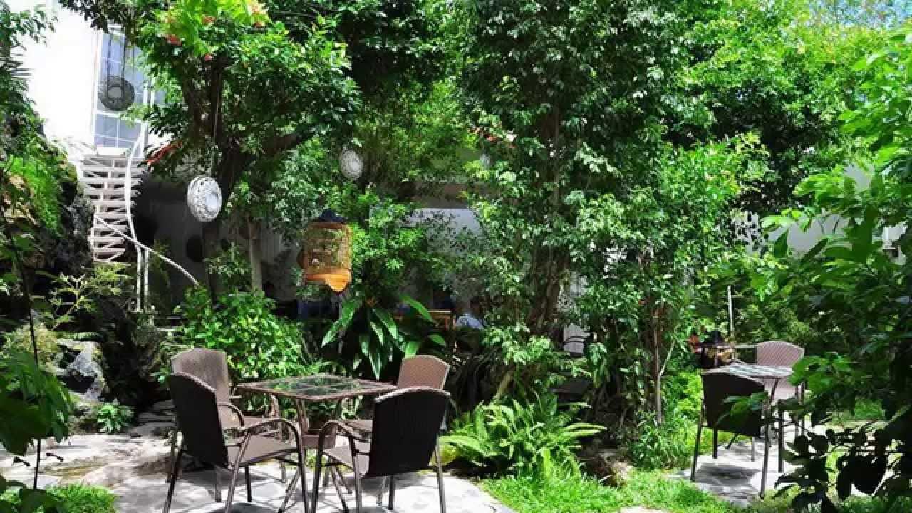 Không gian xanh tại quán cà phê Miền Thùy Dương
