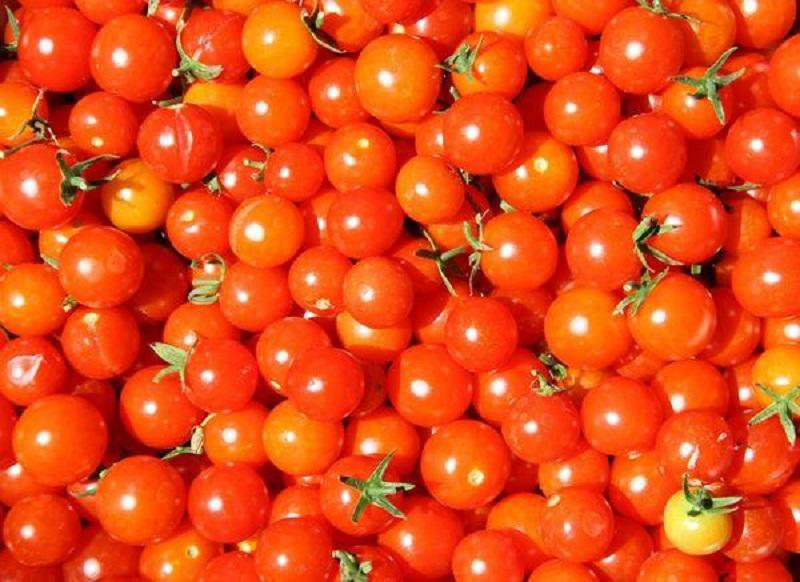 Lựa chọn nguyên liệu là khâu quan trọng trong cách làm mứt cà chua bi.