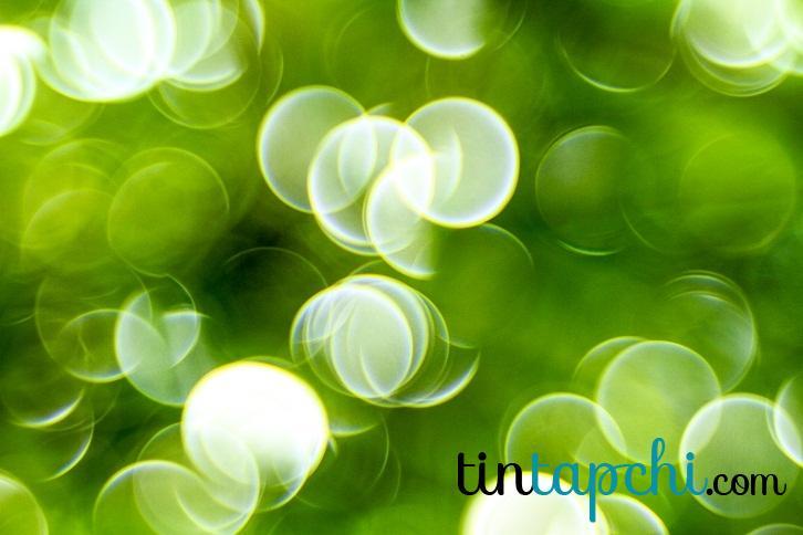 Hình ảnh màu xanh lá cây