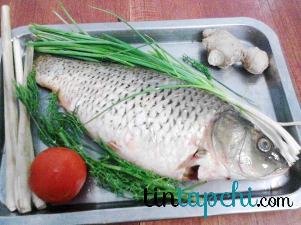 Cá chép rửa sạch, vò nhăn để dễ thấm gia vị vào thịt cá.