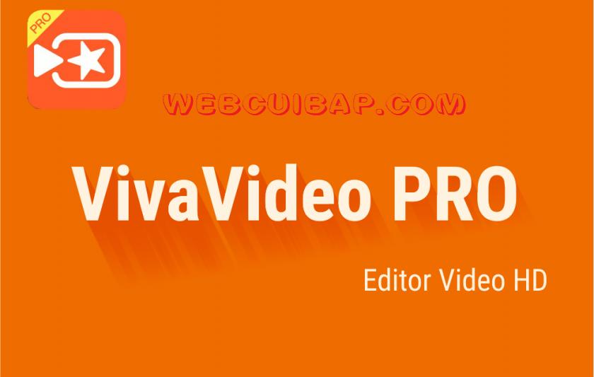 VivaVideo-pro