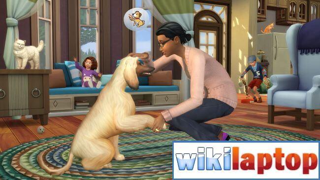 Lừa đảo mã sim 4 cho Chó và Mèo