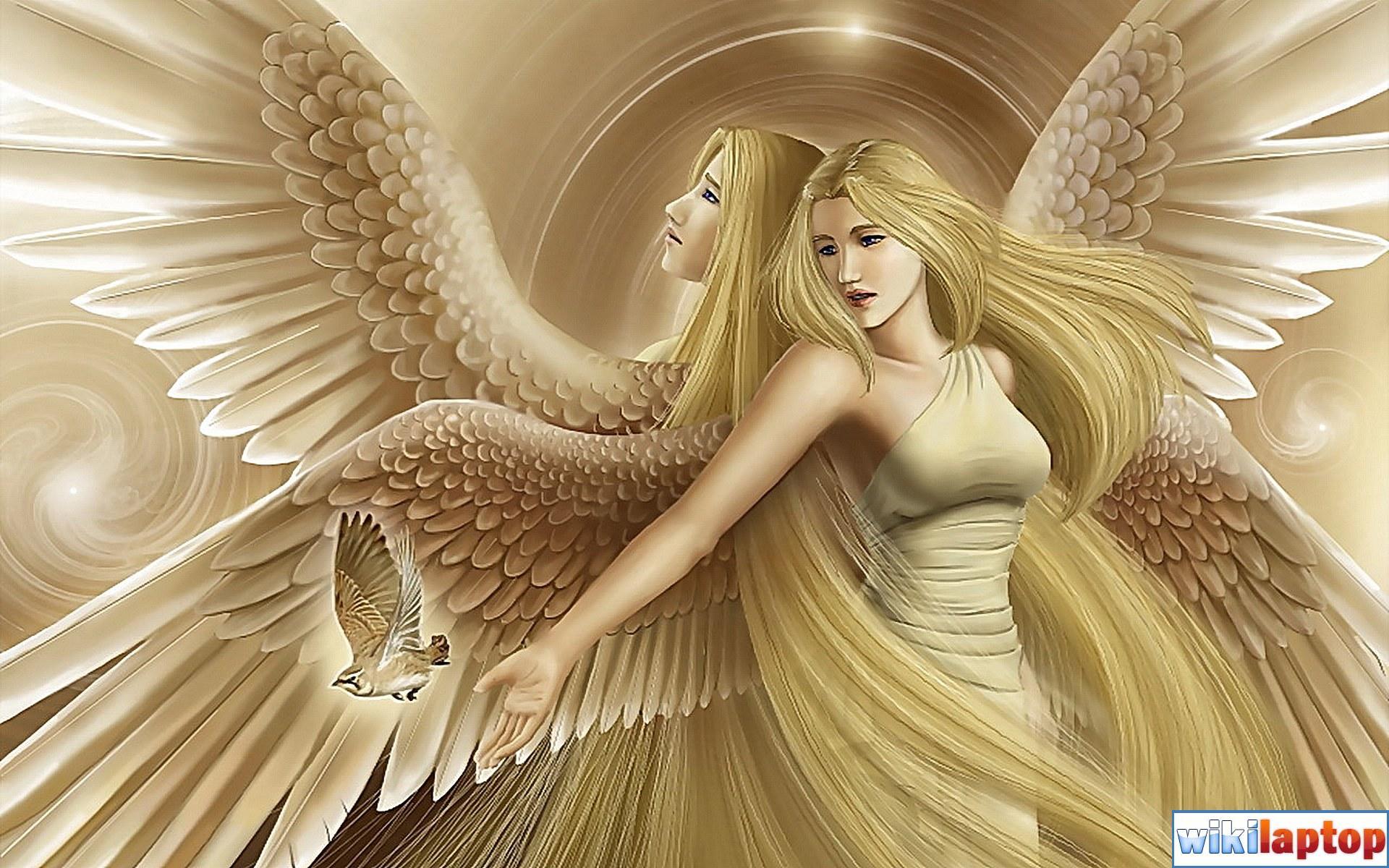 Hình ảnh những thiên thần đẹp nhất 26