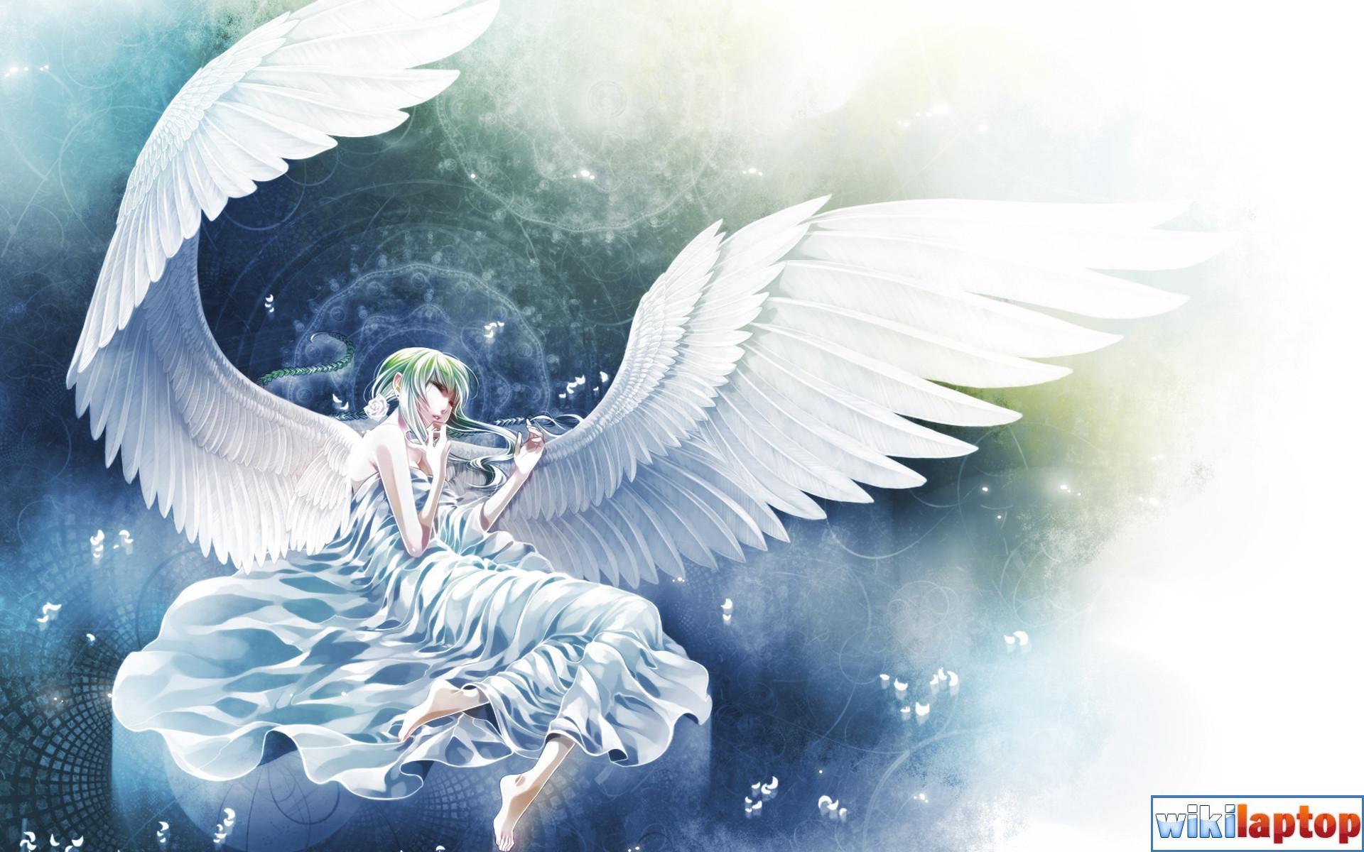 Hình ảnh những thiên thần đẹp nhất 35