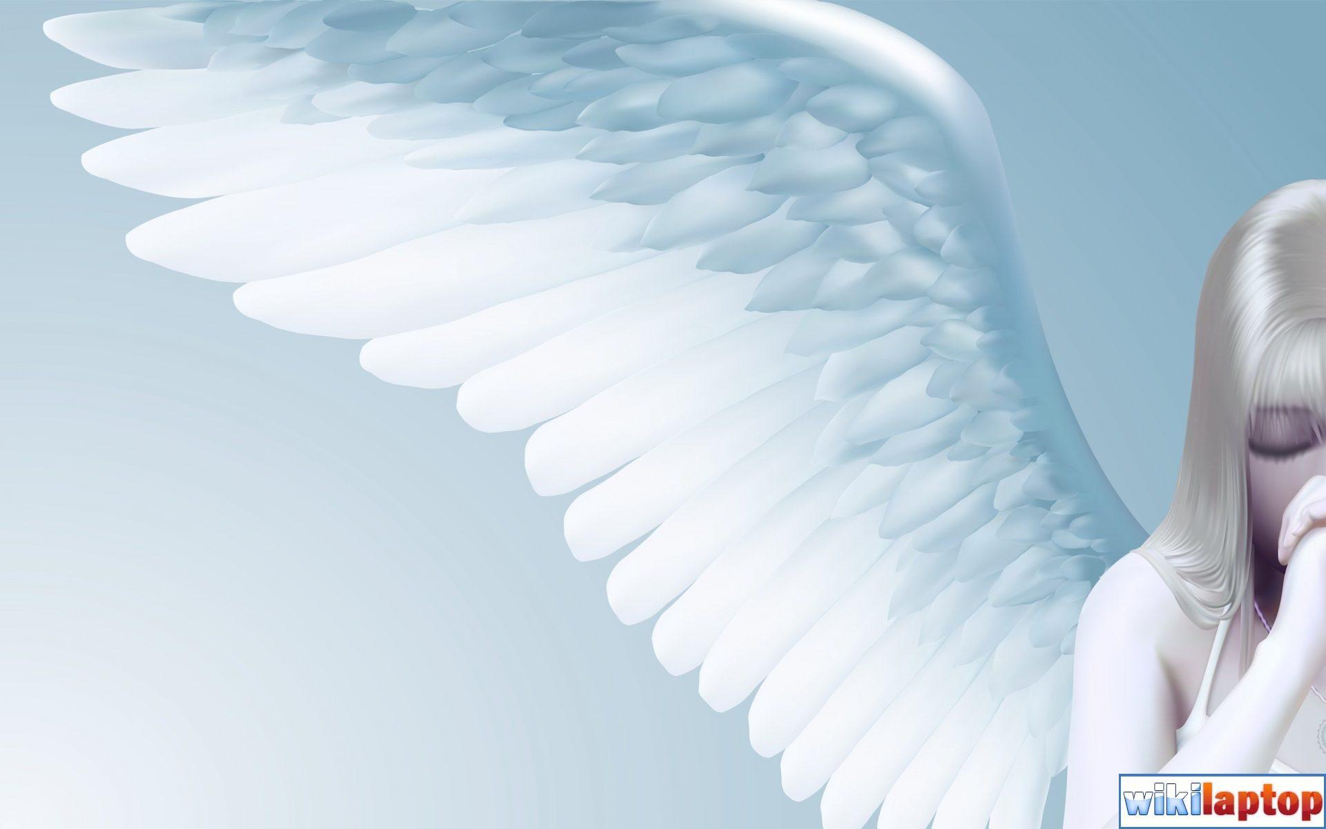 Hình ảnh những thiên thần đẹp nhất 37