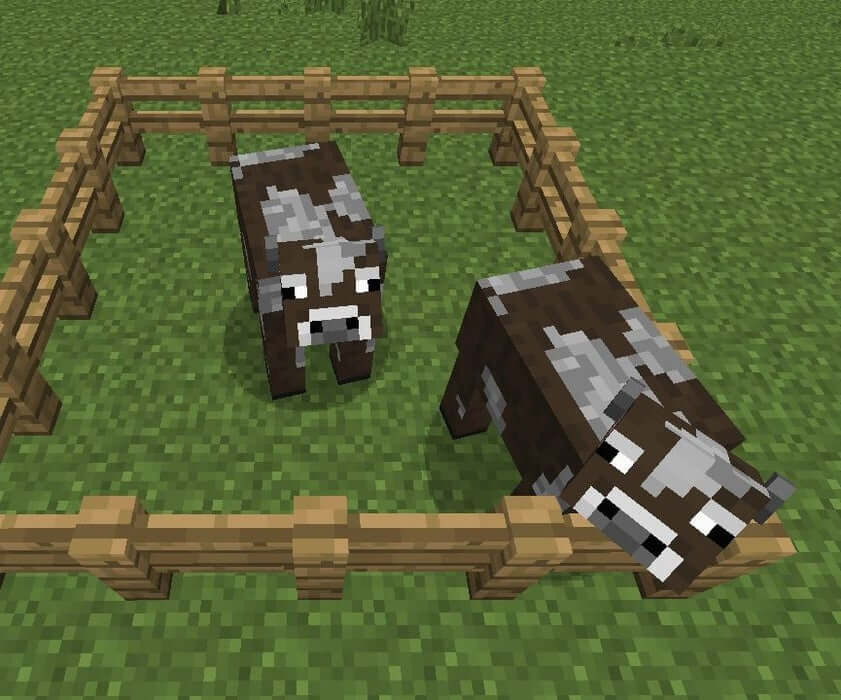Mob thu thập thông tin trong Minecraft