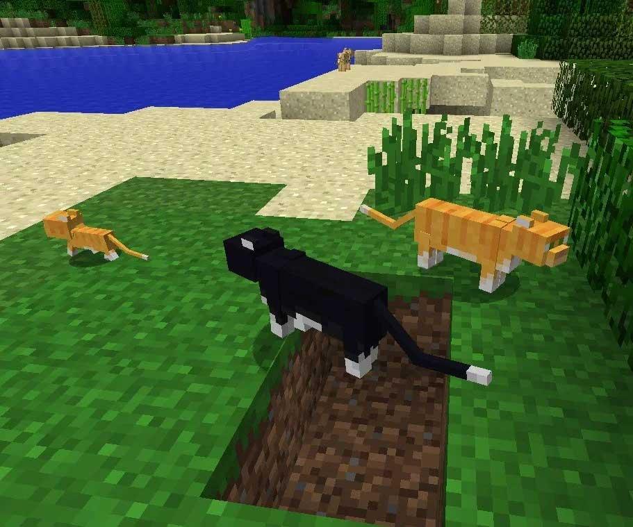 Mob mèo trong Minecraft