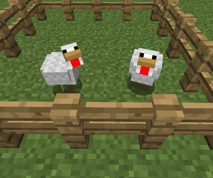 Mob gà trong Minecraft