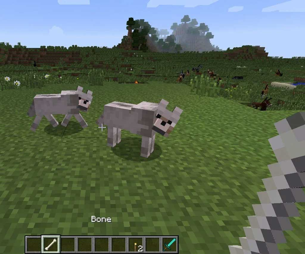 Mob Wolf trong Minecraft
